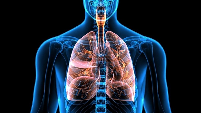 Licensing Deal For Bioinks In 3 D Printed Transplant Lungs