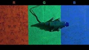 Chameleon Inspired Robot Changes Colors Instantly