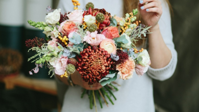 Top Beautiful Flowers That Are Aesthetically Pleasing