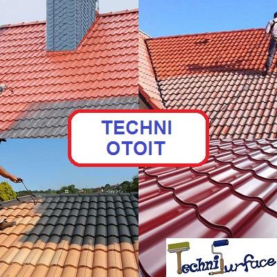 TECHNI SURFACE_TECHNI OTOIT_Peinture pour toiture