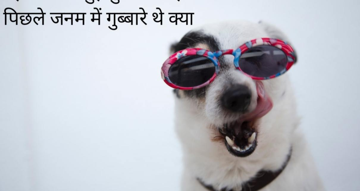 Funny Quotes in Hindi | फनी कॉमेडी शायरी हिंदी मे | funny love Shayari