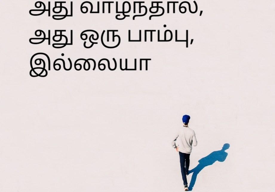 tamil quotes about life |வாழ்க்கையைப் பற்றிய தமிழ் மேற்கோள்கள்