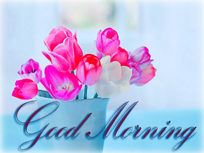 good morning wishes for friends;special good morning wishes;good morning words;good morning messages for friends;good morning note;good morning messages for love;good morning wishes in hindi;good morning messages for him;good morning quotes for friends;good morning quotes 2020;good morning quotes for love;good morning quotes with images;good morning quotes download;extraordinary good morning quotes;good morning quotes hindi;funny good morning quotes;amazing good morning images hd;happy good morning images in hindi;good morning image 2020;good morning images with quotes;good morning all images;good morning images with flowers hd;good morning images with rose flowers;good morning flowers;