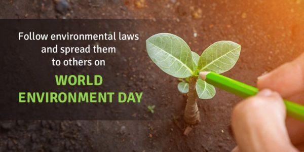 environment day slogan