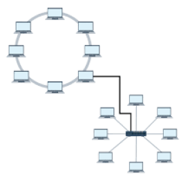 types of network Topology ?