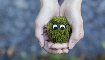hands holding moss
