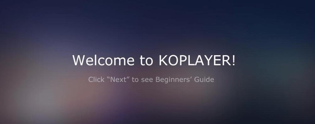 Ko player guide