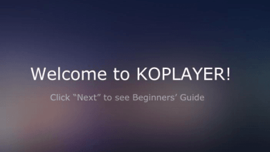 Ko player guide