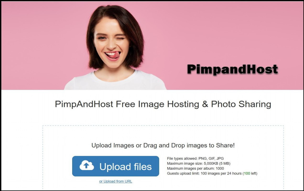 Want to Know About PimpAndHost Website? Details Here