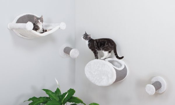 8 Wall Furniture Your Cute and Adorable Cats