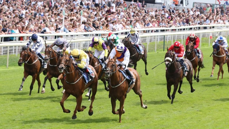 Flat Racing: Big Races to Look Forward To In August