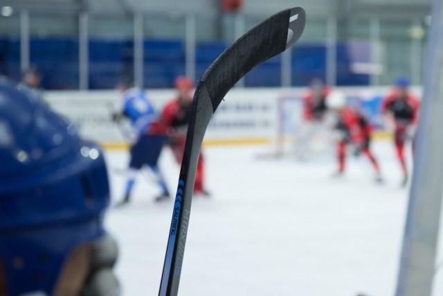 Palette de hockey