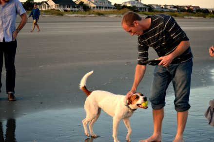 Jac petting the dog who has a tennis ball in his mouth on the beach