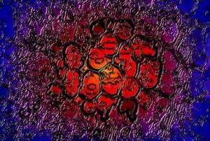 Stardust (Kunstdruck auf Leinwand)