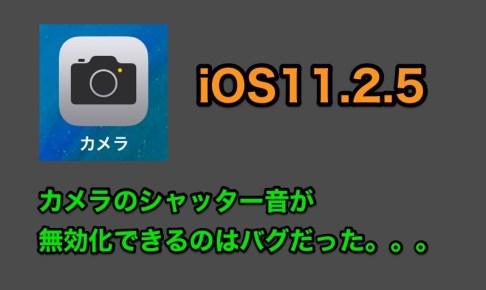 iOS11.2.5でカメラのシャッター音が消せるのは不具合だったことが判明!iOS11.2.5 beta4で修正される