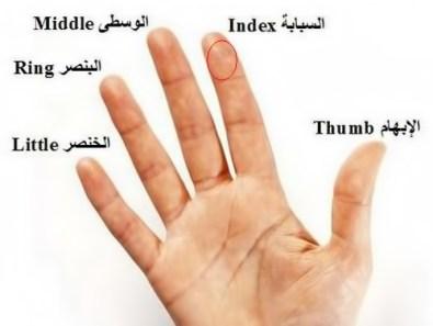 أسماء أصابع اليد