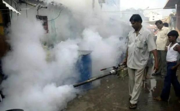 GM mosquitos or pesticides