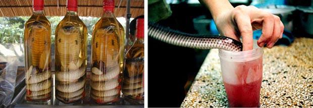 snake blood wine