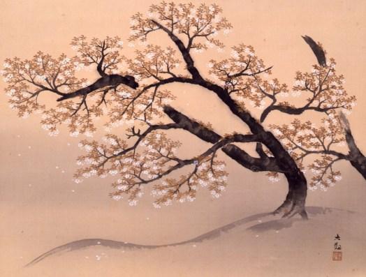 Yokoyama Taikan - Cherry Blossoms
