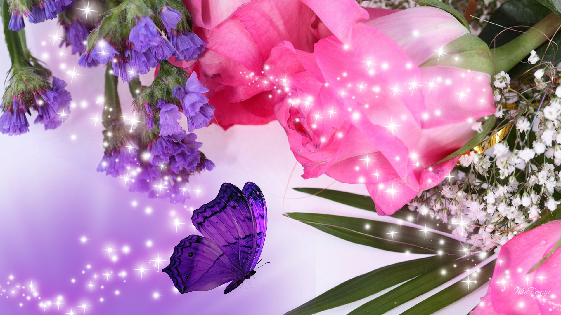 Pinke Bilder 35 High Definition Pink Wallpapers/backgrounds For Free ...