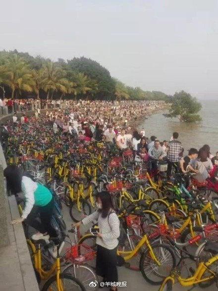 Photo credit: Shenzhen Traffic Police.