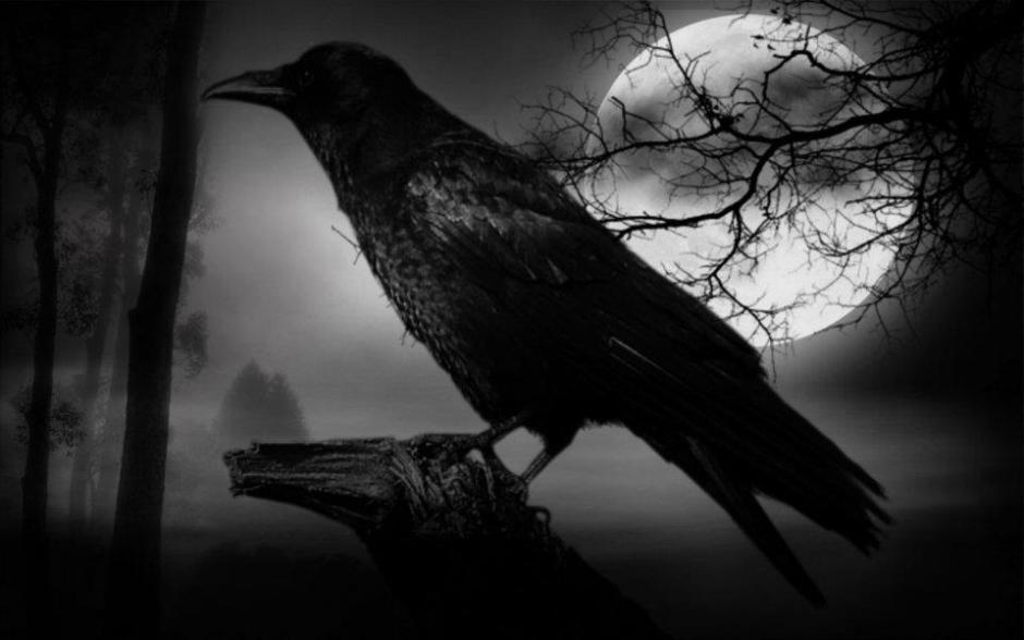 Crow Techno Club