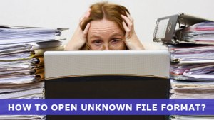 How to open unknown file format