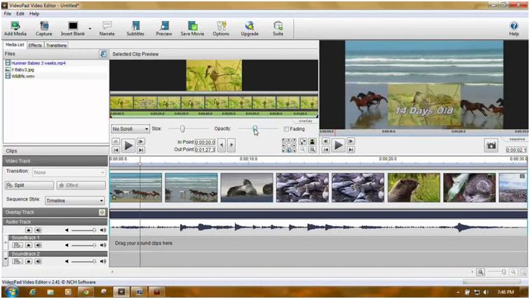 Video alternatives amateur