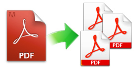 PDF Feature3