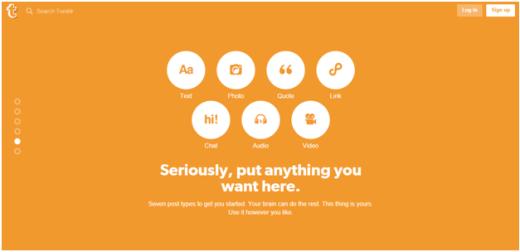 Tumblr Micro Blogging Platform