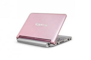 Toshiba Mini NB205 in Pink
