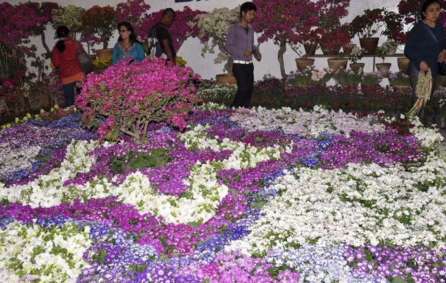 अनलाइन मार्फत अर्डर लिएर तिहारमा घरघरमा फूलमाला पुर्याउने तयारी