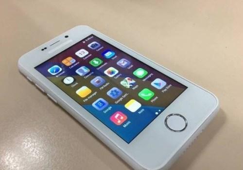 विश्वको सबैभन्दा सस्तो स्मार्टफोन हस्तान्तरण हुने, करिब ४ सय रुपैंयामा 'फ्रीडम २५१'