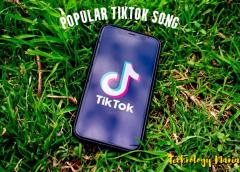 popular tik tok song