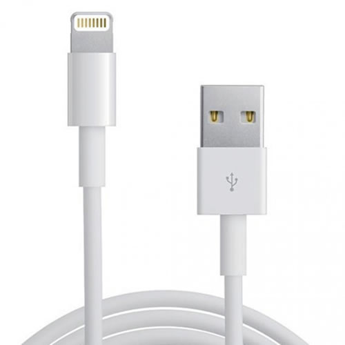 iPhone Sync Cable
