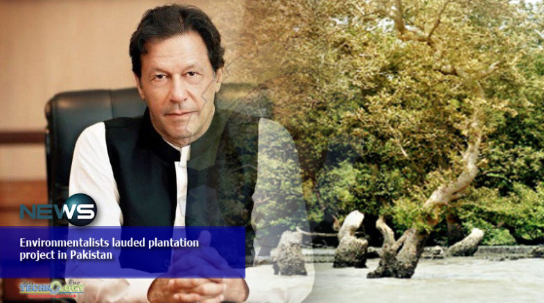 Environmentalists lauded plantation project in Pakistan