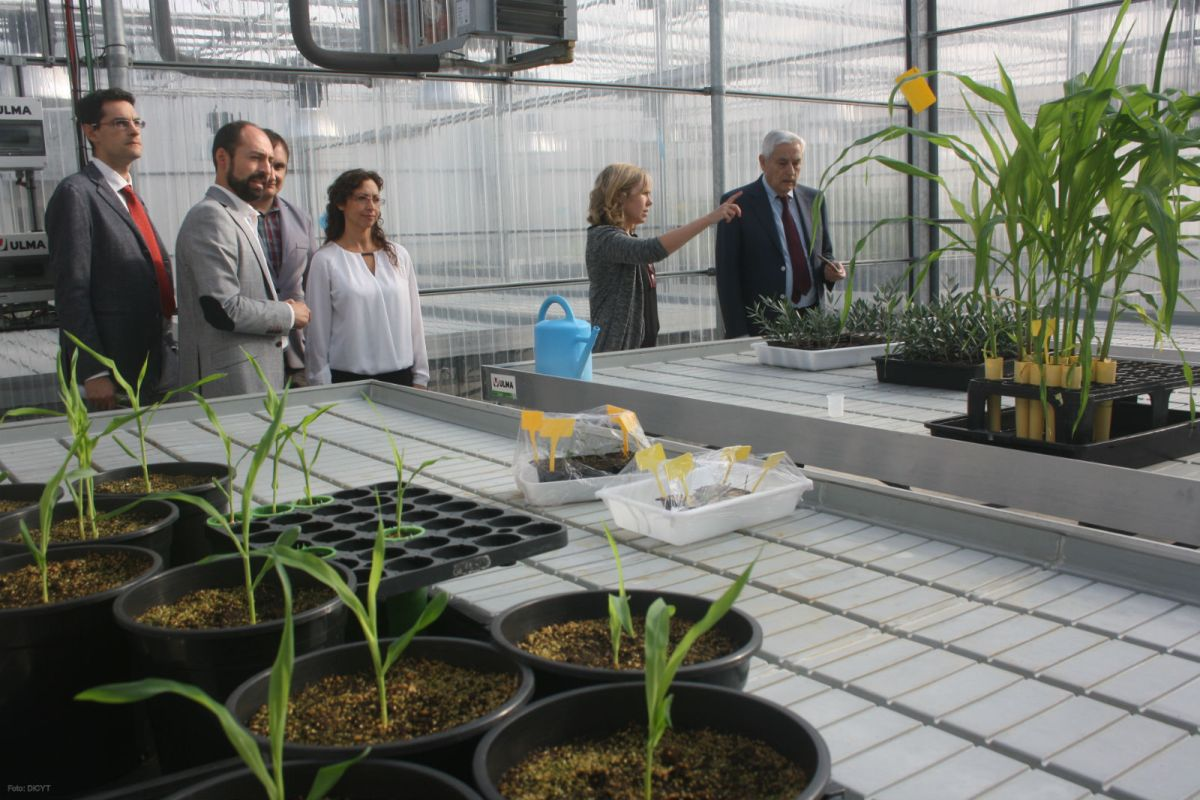 Researchers and businesses seek agricultural improvement in CIALE