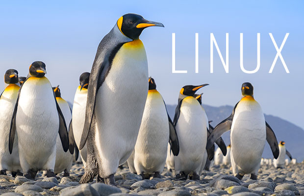 AryaLinux Offers the Building Blocks for a Single Linux