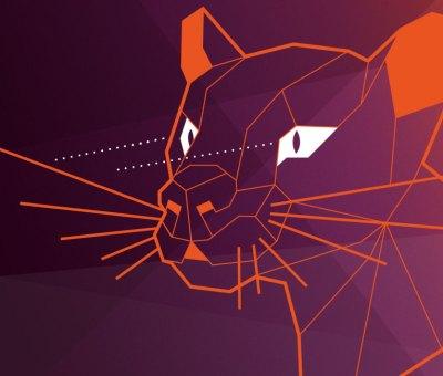 Ubuntu Central Fossa Homes in on Enterprise Security