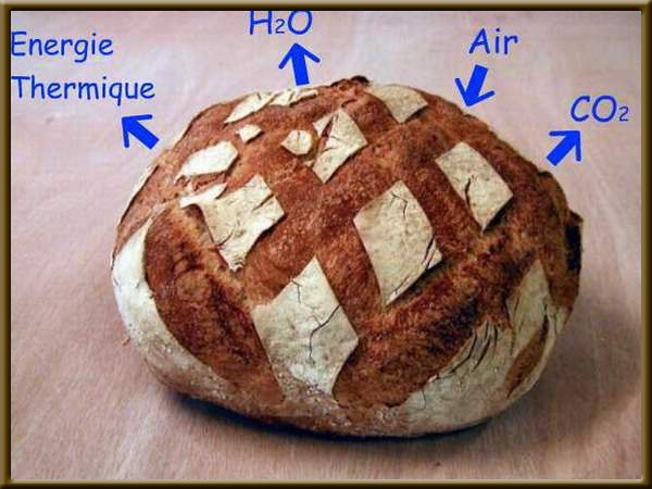 http://www.technomitron.aainb.com/photo/module10/M10123_600.JPG
