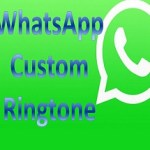 How to Set Customise WhatsApp Notifications For Every Contact