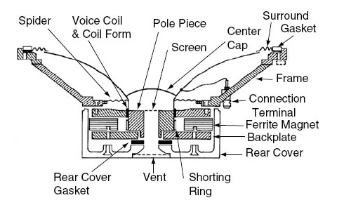 Transduction of an Electrical Signal into Sound