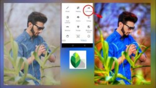 Snapseed Photo Editing App for Android & iOS