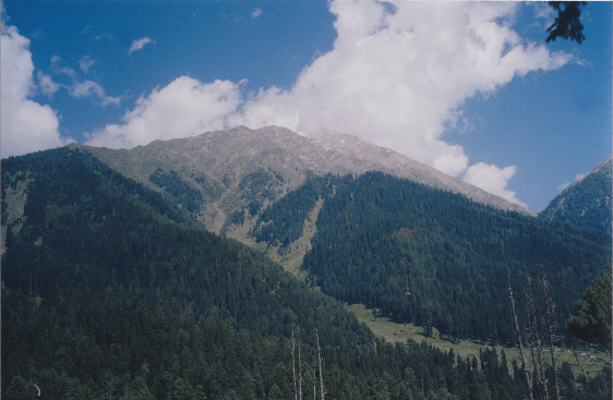 Green Mountains of Pahalgaon