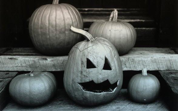 Free Download windows 7 Theme for Halloween