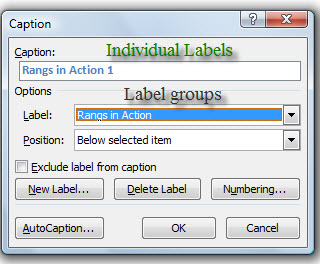 Creating label groups for caption