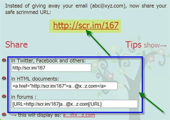 scrim-protected-email-address-accesible-via-url