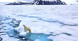 Faster Warming of Arctic Than Entire Earth