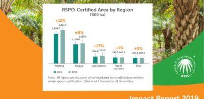 可持續棕櫚油的正面增長