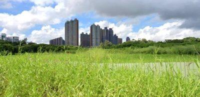 特首:地產商願配合政府政策